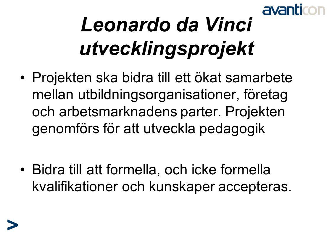 Leonardo da Vinci utvecklingsprojekt •Projekten ska bidra till ett ökat samarbete mellan utbildningsorganisationer, företag och arbetsmarknadens parte