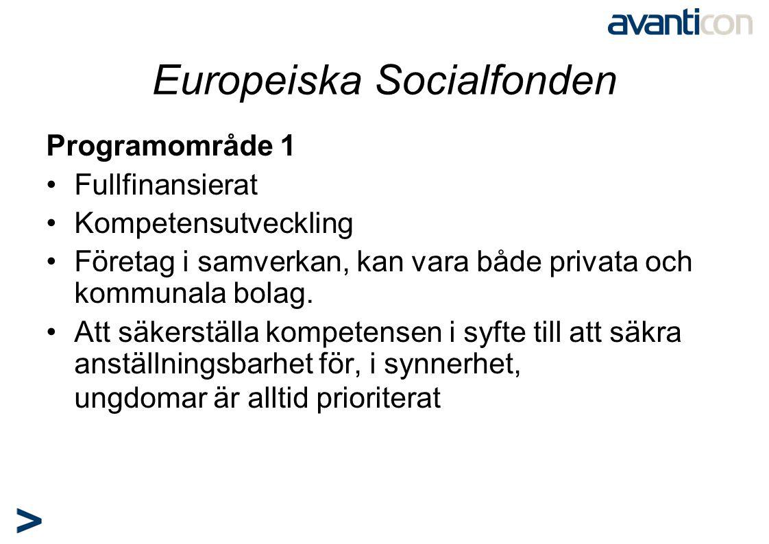 Europeiska Socialfonden Programområde 1 •Fullfinansierat •Kompetensutveckling •Företag i samverkan, kan vara både privata och kommunala bolag. •Att sä