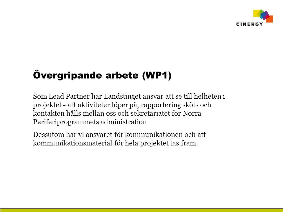 Övergripande arbete (WP1) Som Lead Partner har Landstinget ansvar att se till helheten i projektet - att aktiviteter löper på, rapportering sköts och kontakten hålls mellan oss och sekretariatet för Norra Periferiprogrammets administration.