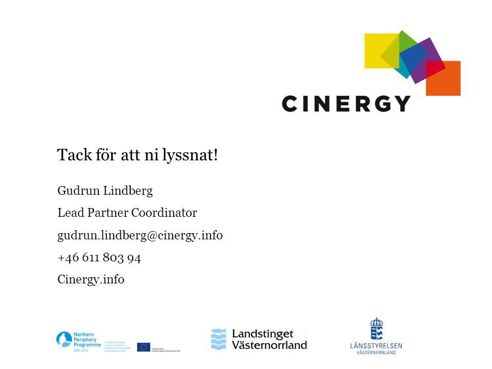 Gudrun Lindberg Lead Partner Coordinator gudrun.lindberg@cinergy.info +46 611 803 94 Cinergy.info Tack för att ni lyssnat!
