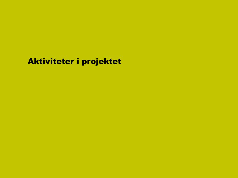 Aktiviteter i projektet