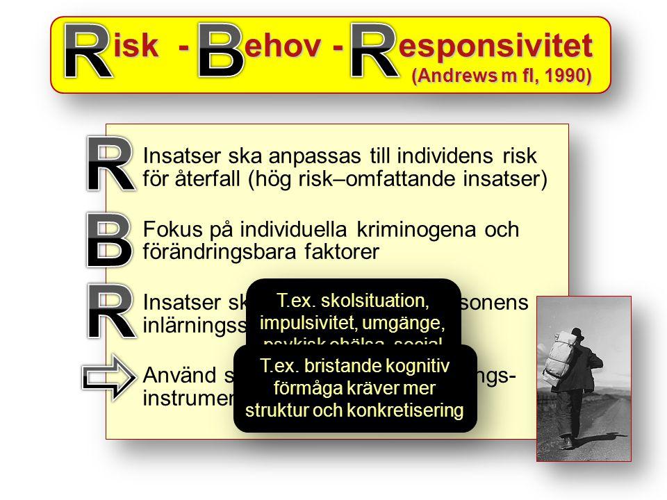 isk - ehov - esponsivitet isk - ehov - esponsivitet (Andrews m fl, 1990) isk - ehov - esponsivitet isk - ehov - esponsivitet (Andrews m fl, 1990) Insatser ska anpassas till individens risk för återfall (hög risk–omfattande insatser) Fokus på individuella kriminogena och förändringsbara faktorer Insatser ska anpassas efter personens inlärningsstil Använd standardiserade bedömnings- instrument (Savry, Adad, etc) Insatser ska anpassas till individens risk för återfall (hög risk–omfattande insatser) Fokus på individuella kriminogena och förändringsbara faktorer Insatser ska anpassas efter personens inlärningsstil Använd standardiserade bedömnings- instrument (Savry, Adad, etc) T.ex.