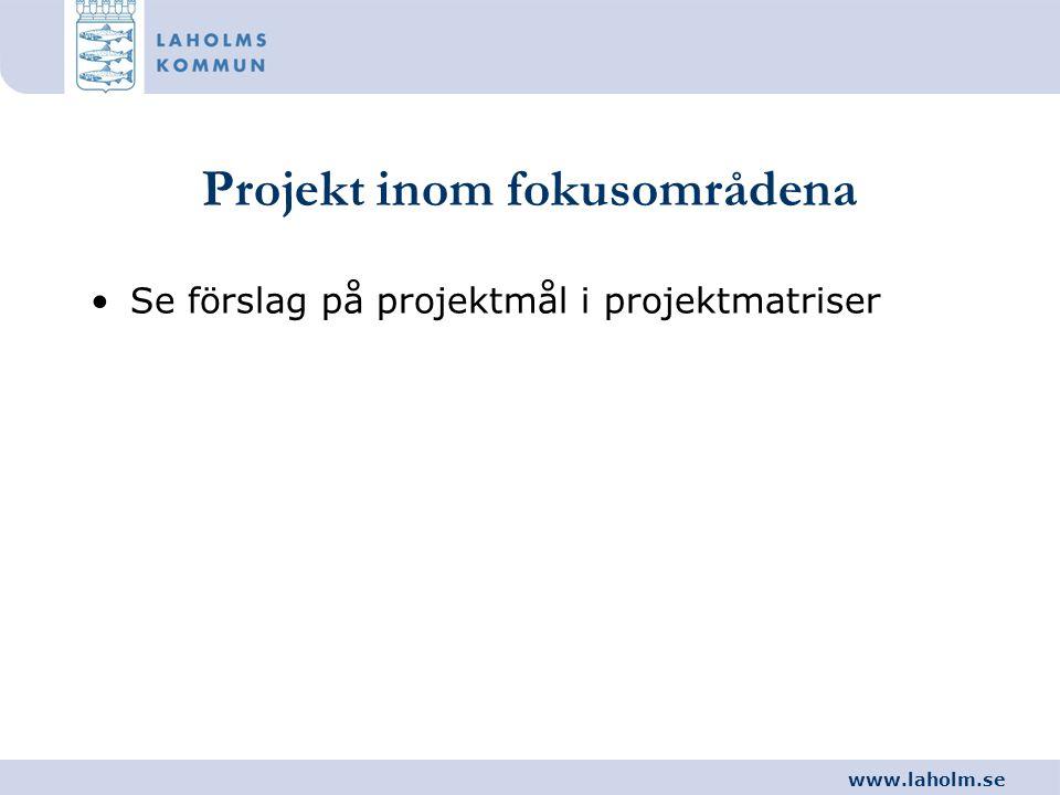 www.laholm.se Projekt inom fokusområdena •Se förslag på projektmål i projektmatriser