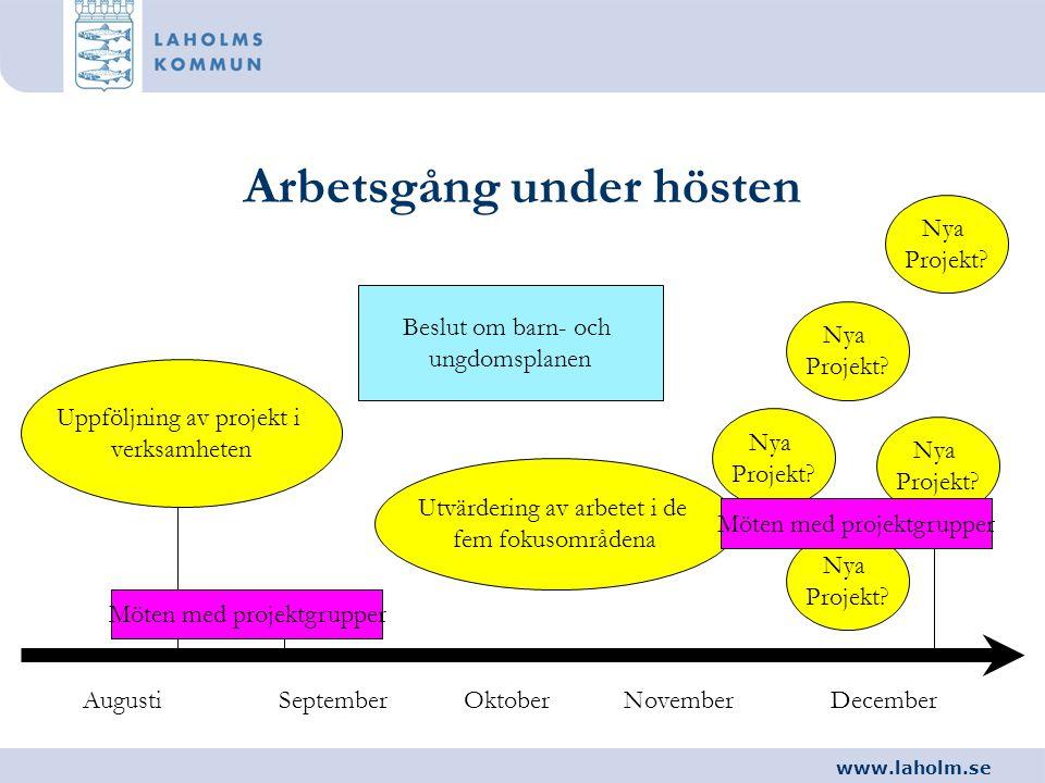 www.laholm.se Arbetsgång under hösten AugustiSeptemberOktoberNovemberDecember Beslut om barn- och ungdomsplanen Uppföljning av projekt i verksamheten
