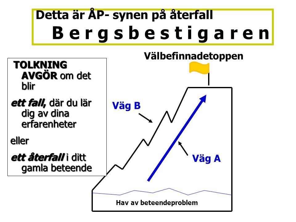 Detta är ÅP- synen på återfall B e r g s b e s t i g a r e n Välbefinnadetoppen Väg A Väg B Hav av beteendeproblem TOLKNING AVGÖR om det blir TOLKNING
