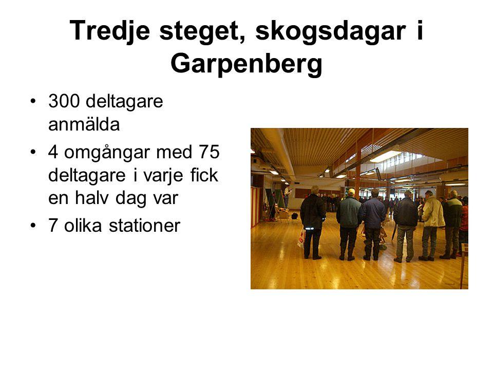 Tredje steget, skogsdagar i Garpenberg •300 deltagare anmälda •4 omgångar med 75 deltagare i varje fick en halv dag var •7 olika stationer