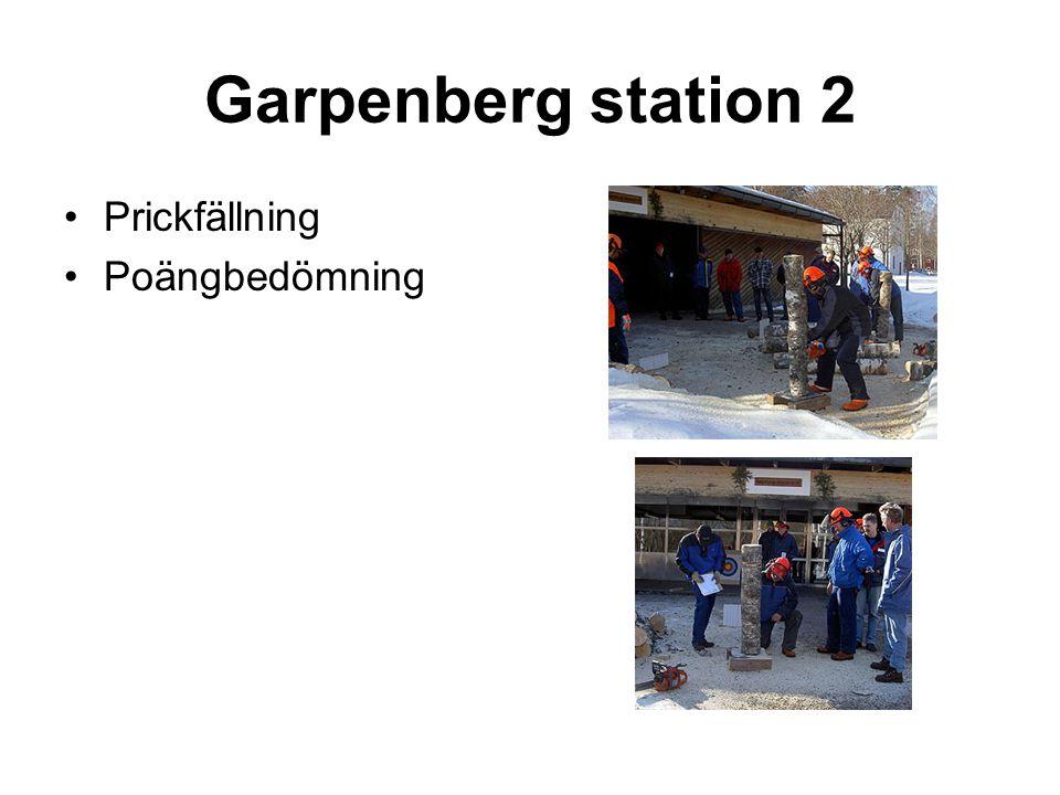 Garpenberg station 2 •Prickfällning •Poängbedömning