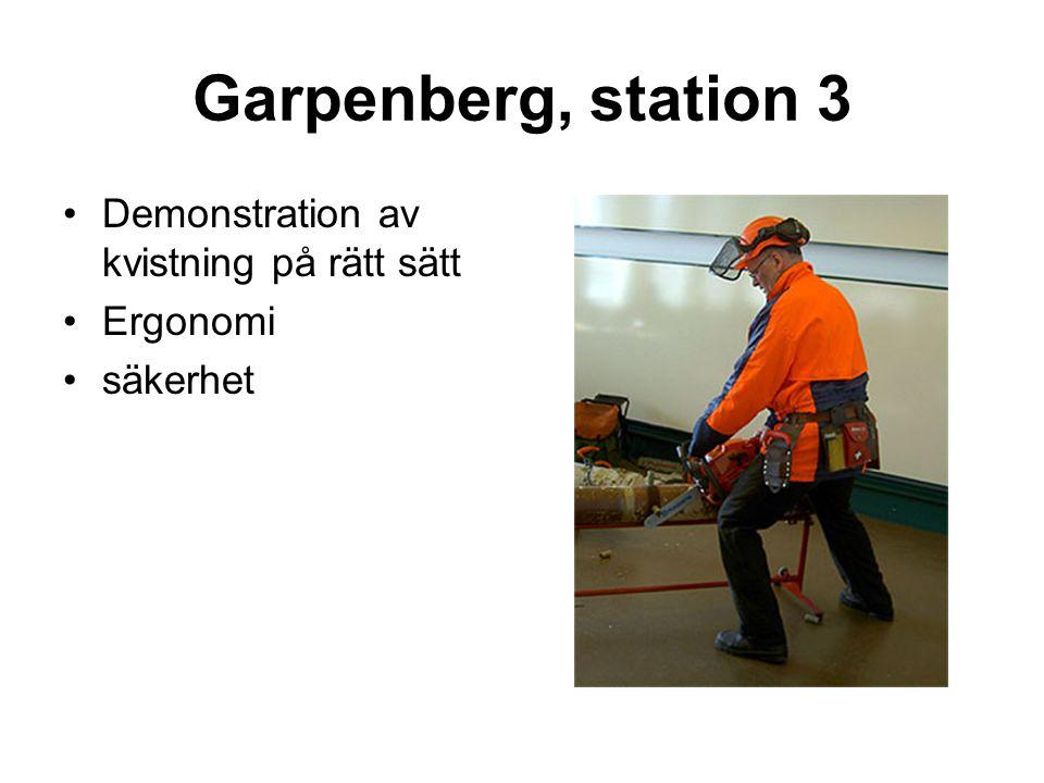 Garpenberg, station 3 •Demonstration av kvistning på rätt sätt •Ergonomi •säkerhet