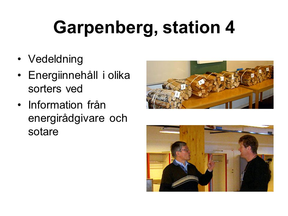 Garpenberg, station 4 •Vedeldning •Energiinnehåll i olika sorters ved •Information från energirådgivare och sotare