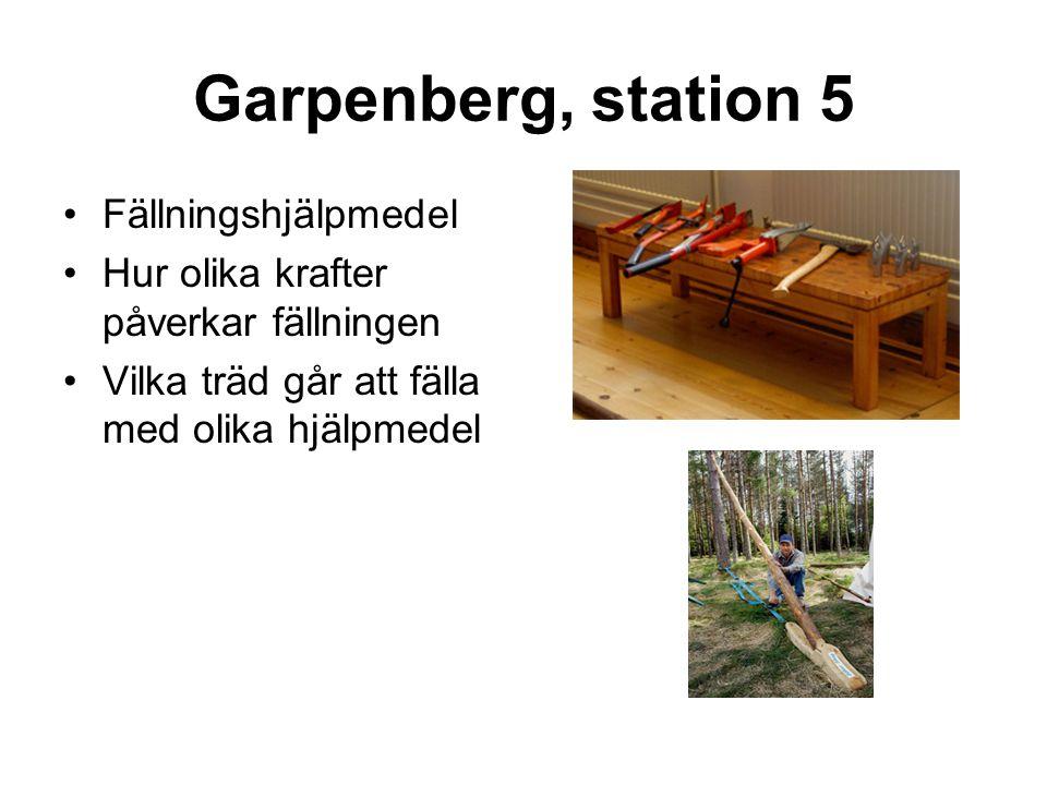 Garpenberg, station 5 •Fällningshjälpmedel •Hur olika krafter påverkar fällningen •Vilka träd går att fälla med olika hjälpmedel
