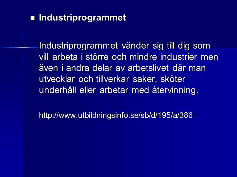  Industriprogrammet Industriprogrammet vänder sig till dig som vill arbeta i större och mindre industrier men även i andra delar av arbetslivet där m