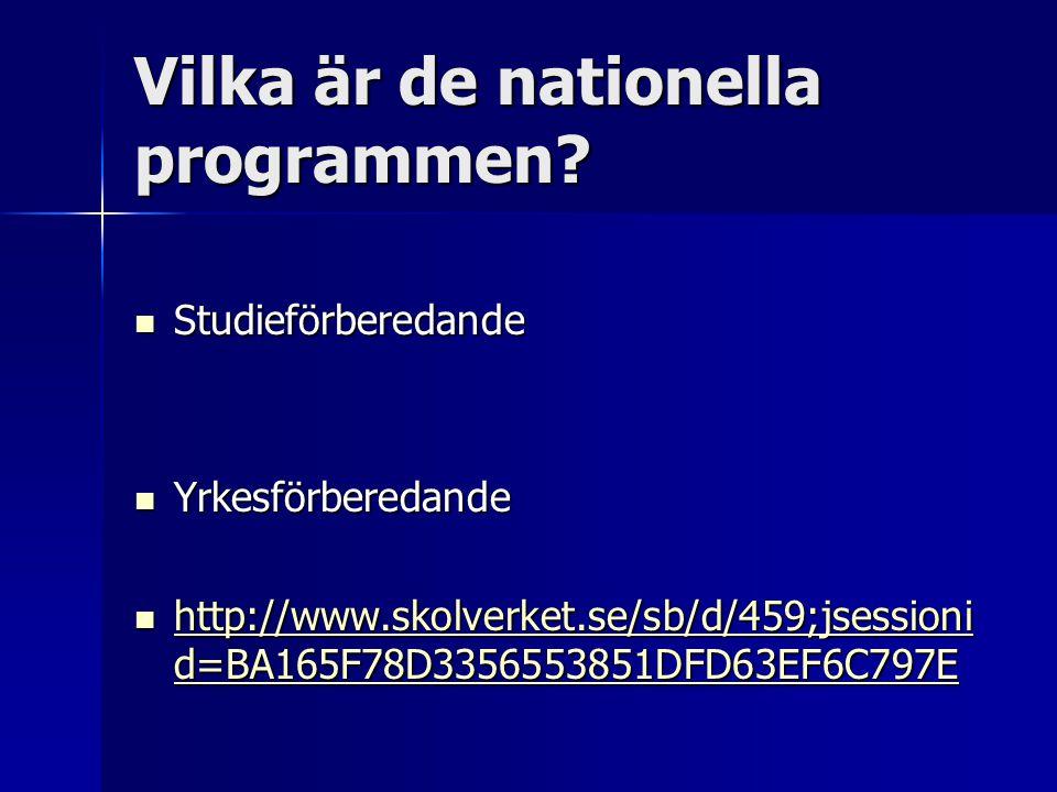 Vilka är de nationella programmen?  Studieförberedande  Yrkesförberedande  http://www.skolverket.se/sb/d/459;jsessioni d=BA165F78D3356553851DFD63EF