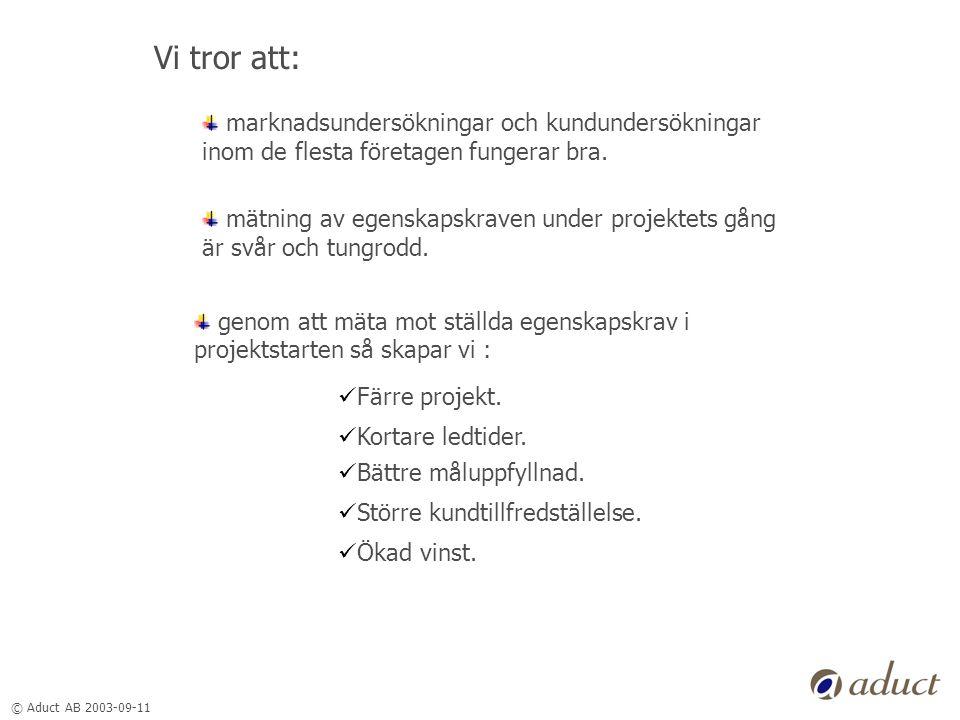 © Aduct AB 2003-09-11 Vi tror att: marknadsundersökningar och kundundersökningar inom de flesta företagen fungerar bra.