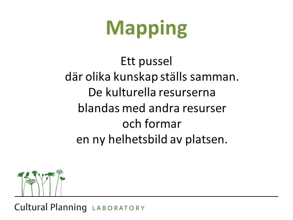 Mapping Ett pussel där olika kunskap ställs samman.