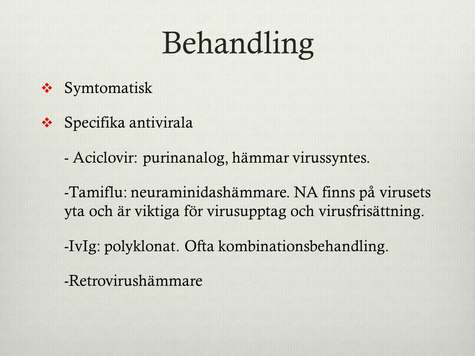 Behandling  Symtomatisk  Specifika antivirala - Aciclovir: purinanalog, hämmar virussyntes. -Tamiflu: neuraminidashämmare. NA finns på virusets yta