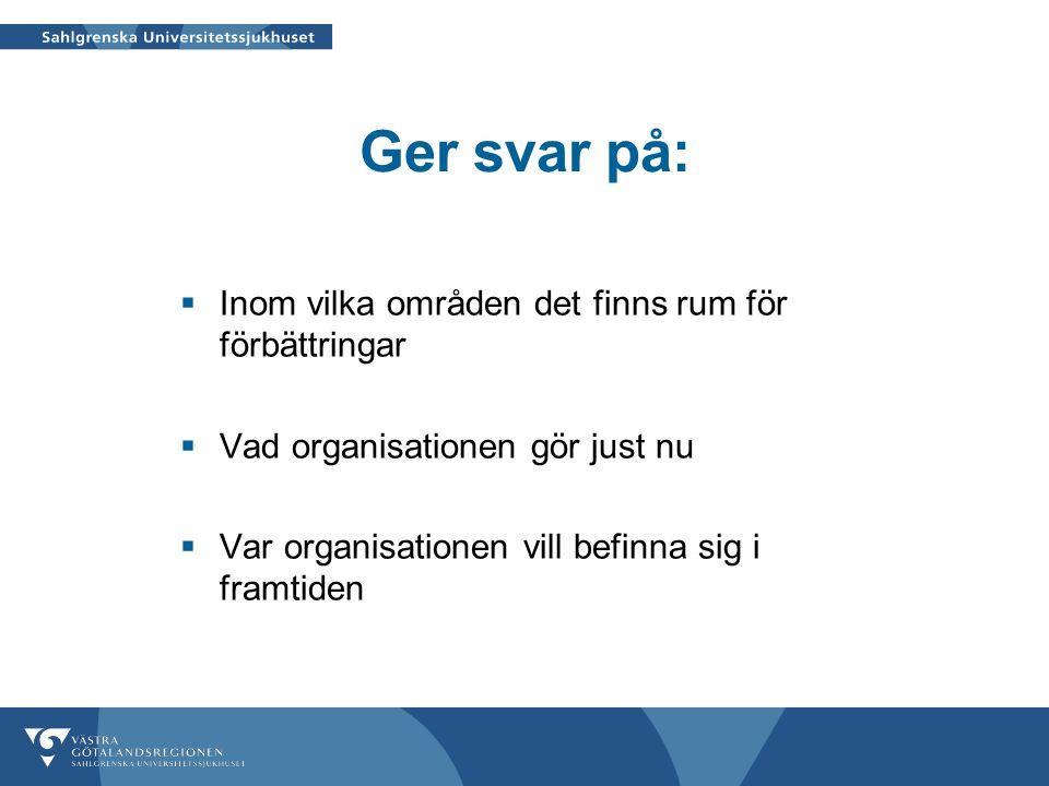 Ger svar på:  Inom vilka områden det finns rum för förbättringar  Vad organisationen gör just nu  Var organisationen vill befinna sig i framtiden