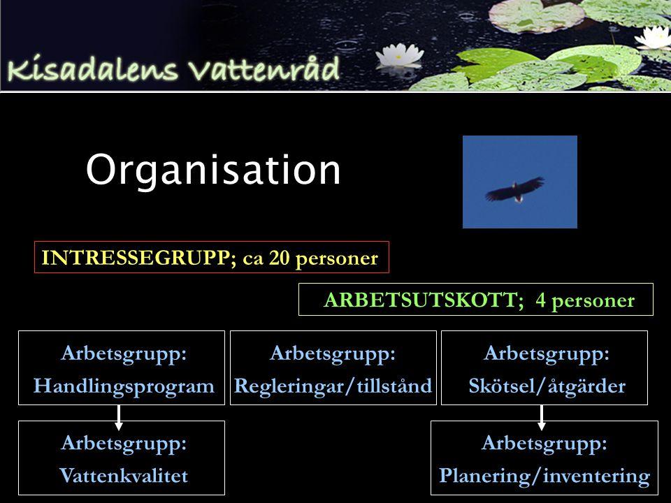 Organisation INTRESSEGRUPP; ca 20 personer ARBETSUTSKOTT; 4 personer Arbetsgrupp: Handlingsprogram Arbetsgrupp: Regleringar/tillstånd Arbetsgrupp: Skötsel/åtgärder Arbetsgrupp: Vattenkvalitet Arbetsgrupp: Planering/inventering