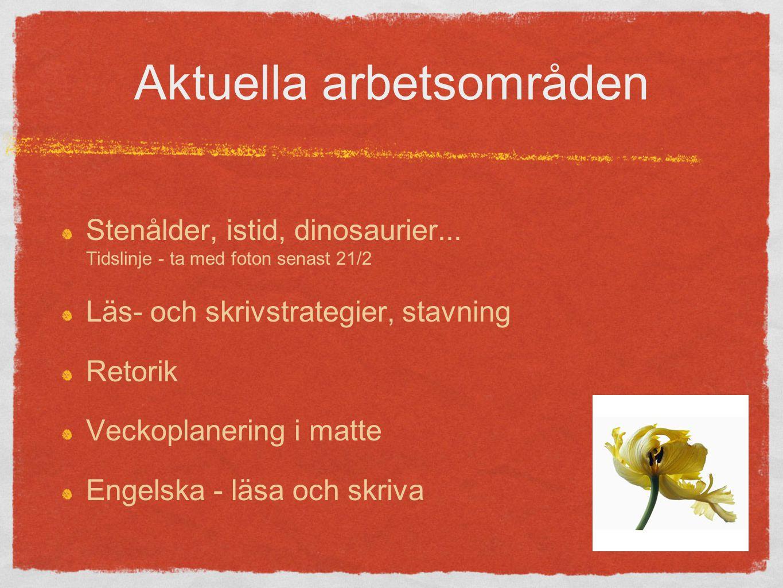 Aktuella arbetsområden Stenålder, istid, dinosaurier...