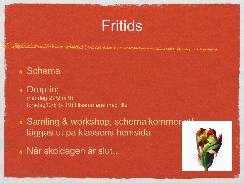 Fritids Schema Drop-in; måndag 27/2 (v 9) torsdag10/5 (v 19) tillsammans med lilla Samling & workshop, schema kommer att läggas ut på klassens hemsida.