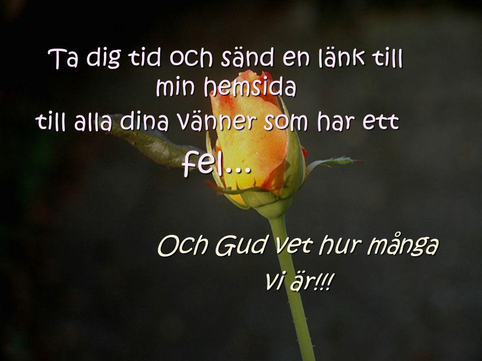Till alla mina vänner. Ha en fin dag. Och kom ihåg att lukta på blommorna på din sida av stigen.