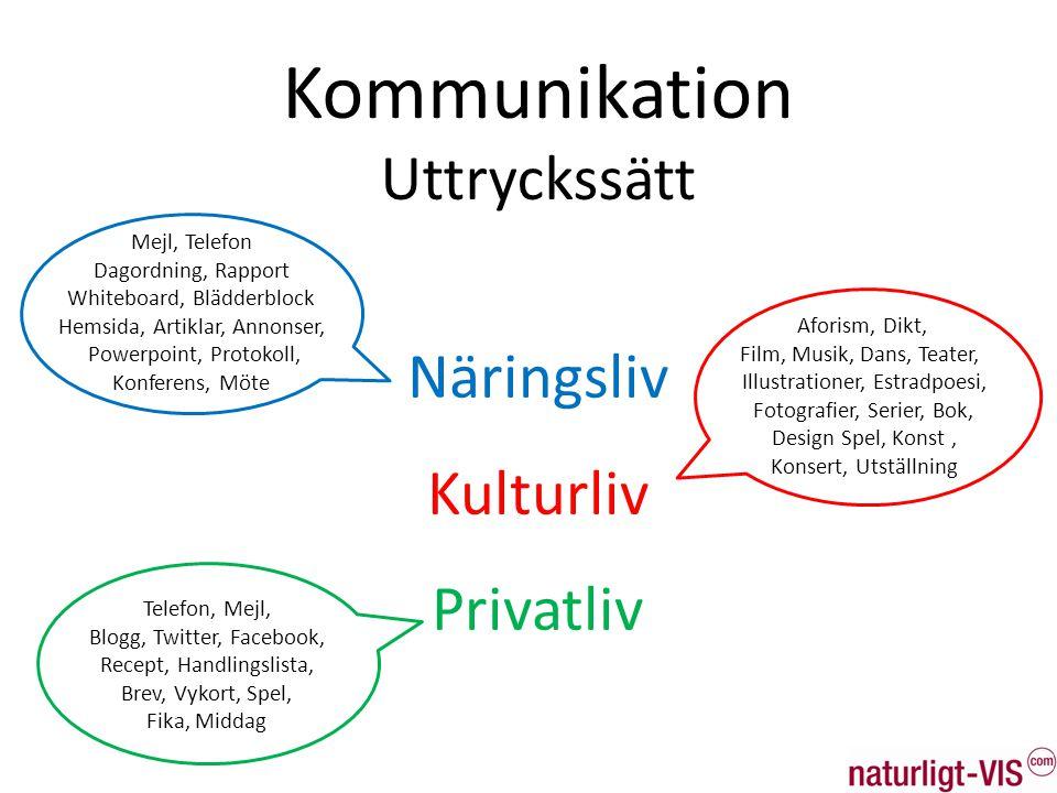 Kommunikation Uttryckssätt Näringsliv Kulturliv Privatliv Mejl, Telefon Dagordning, Rapport Whiteboard, Blädderblock Hemsida, Artiklar, Annonser, Powe