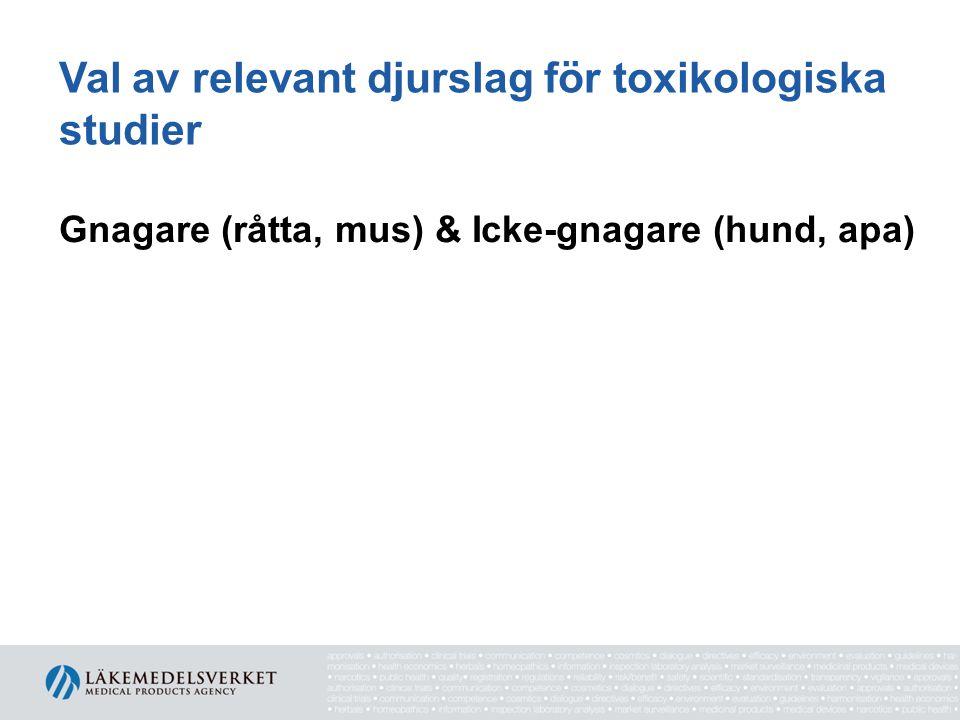 Val av relevant djurslag för toxikologiska studier Gnagare (råtta, mus) & Icke-gnagare (hund, apa)