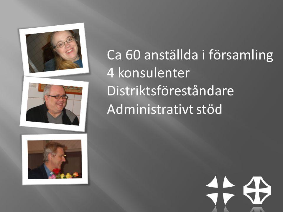 Ca 60 anställda i församling 4 konsulenter Distriktsföreståndare Administrativt stöd