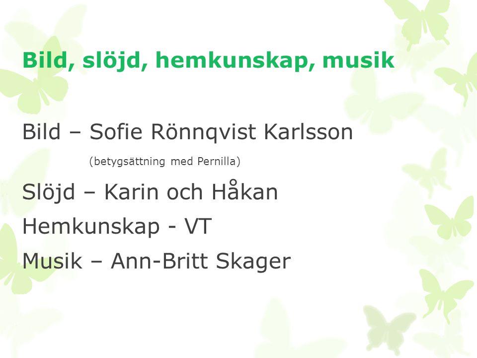 Bild, slöjd, hemkunskap, musik Bild – Sofie Rönnqvist Karlsson (betygsättning med Pernilla) Slöjd – Karin och Håkan Hemkunskap - VT Musik – Ann-Britt Skager