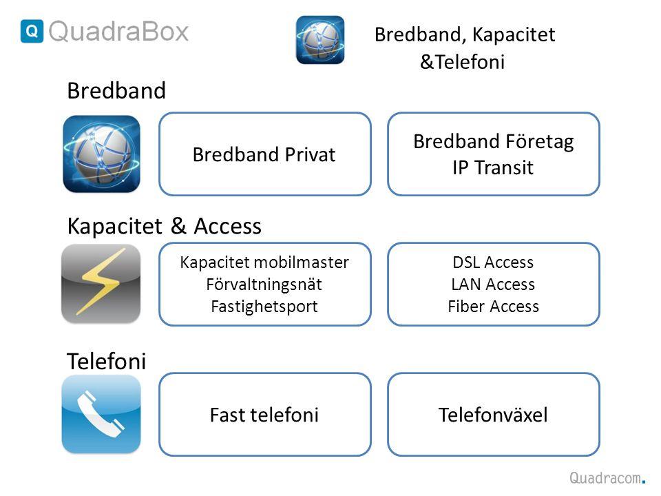 DSL Access LAN Access Fiber Access Bredband Företag IP Transit Bredband Privat Kapacitet mobilmaster Förvaltningsnät Fastighetsport Bredband, Kapacite