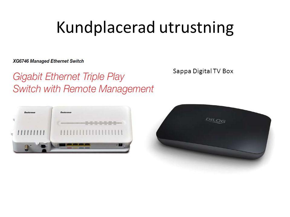 Kundplacerad utrustning Sappa Digital TV Box