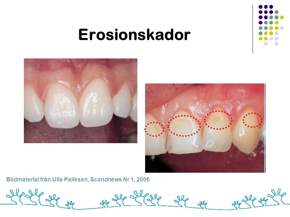 Erosionskador Bildmaterial från Ulla Pallesen, Scandnews Nr 1, 2006