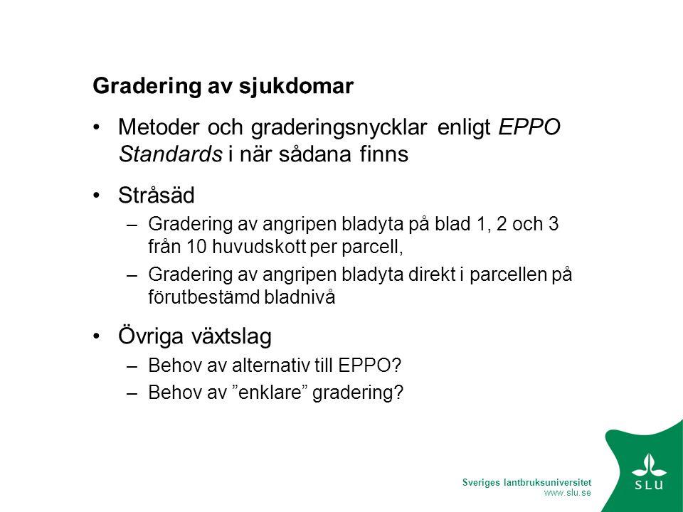 Sveriges lantbruksuniversitet www.slu.se Gradering av sjukdomar •Metoder och graderingsnycklar enligt EPPO Standards i när sådana finns •Stråsäd –Grad