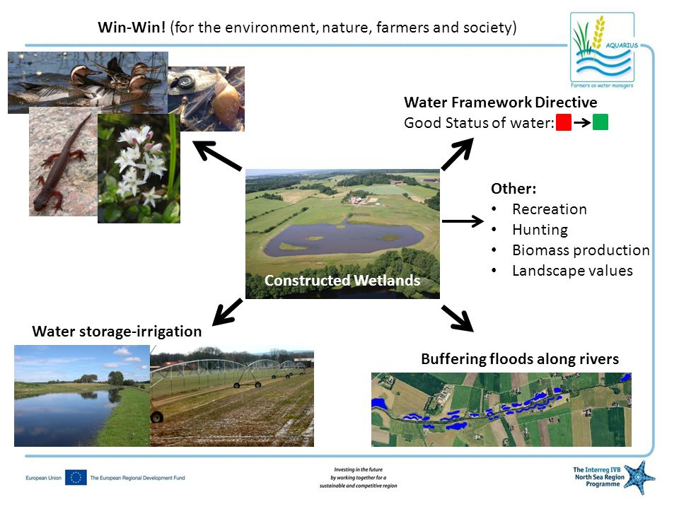 Torka Win-Win! (for the environment, nature, farmers and society) Water Framework Directive Good Status of water: Buffering floods along rivers Water