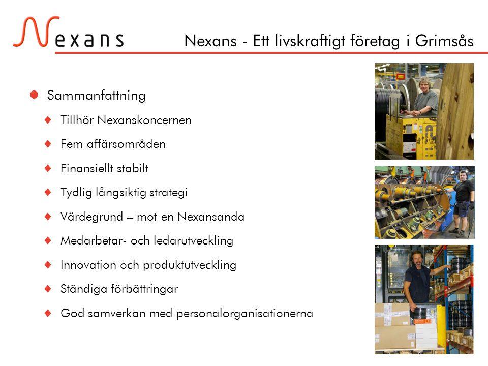 Sida 17 Nexans - Ett livskraftigt företag i Grimsås  Sammanfattning  Tillhör Nexanskoncernen  Fem affärsområden  Finansiellt stabilt  Tydlig lång