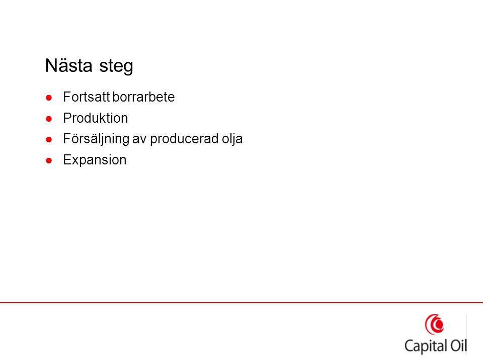 Nästa steg ●Fortsatt borrarbete ●Produktion ●Försäljning av producerad olja ●Expansion