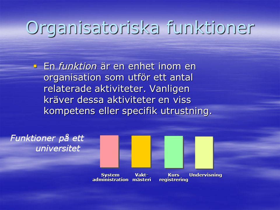 Organisatoriska funktioner  En funktion är en enhet inom en organisation som utför ett antal relaterade aktiviteter. Vanligen kräver dessa aktivitete