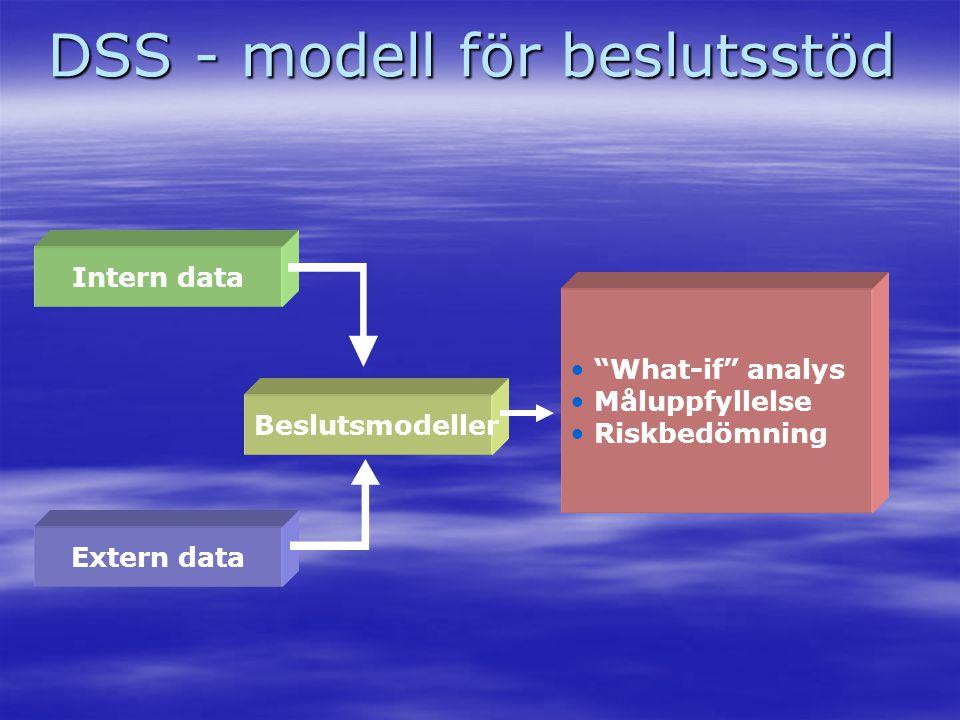 """DSS - modell för beslutsstöd Intern data Extern data Beslutsmodeller • """"What-if"""" analys • Måluppfyllelse • Riskbedömning"""