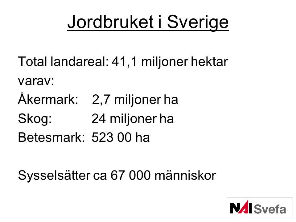 Jordbruket i Sverige Total landareal: 41,1 miljoner hektar varav: Åkermark: 2,7 miljoner ha Skog: 24 miljoner ha Betesmark: 523 00 ha Sysselsätter ca