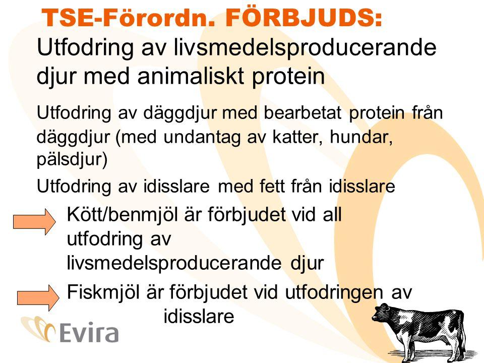 TSE-Förordn. FÖRBJUDS: Utfodring av livsmedelsproducerande djur med animaliskt protein Utfodring av däggdjur med bearbetat protein från däggdjur (med