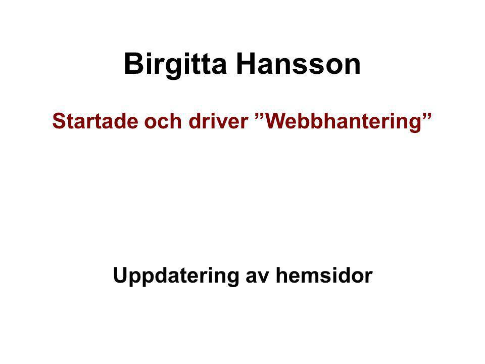 """Birgitta Hansson Startade och driver """"Webbhantering"""" Uppdatering av hemsidor"""
