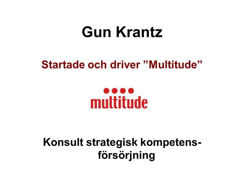 """Gun Krantz Startade och driver """"Multitude"""" Konsult strategisk kompetens- försörjning"""