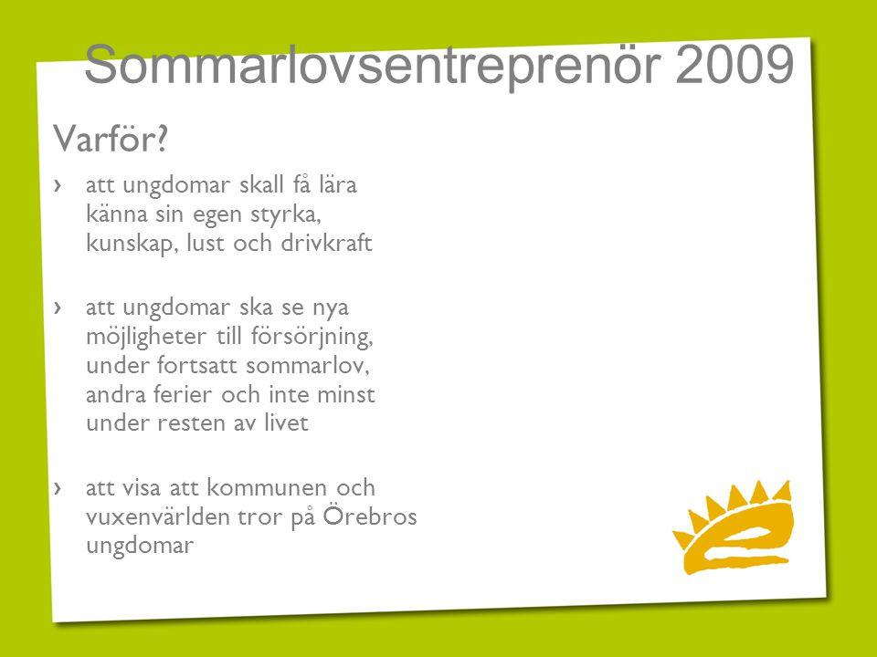 Sommarlovsentreprenör 2009 Varför? › att ungdomar skall få lära känna sin egen styrka, kunskap, lust och drivkraft › att ungdomar ska se nya möjlighet