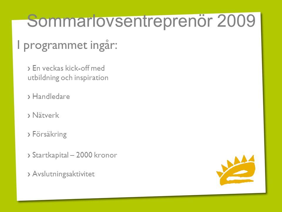 Sommarlovsentreprenör 2009 I programmet ingår: › En veckas kick-off med utbildning och inspiration › Handledare › Nätverk › Försäkring › Startkapital