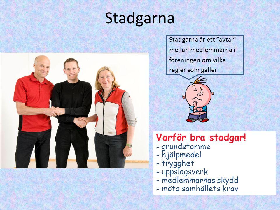 Stadgarna Varför bra stadgar.