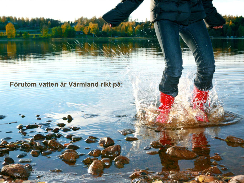 Förutom vatten är Värmland rikt på: