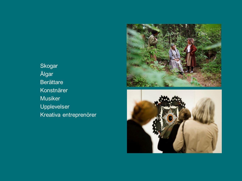 Skogar Älgar Berättare Konstnärer Musiker Upplevelser Kreativa entreprenörer