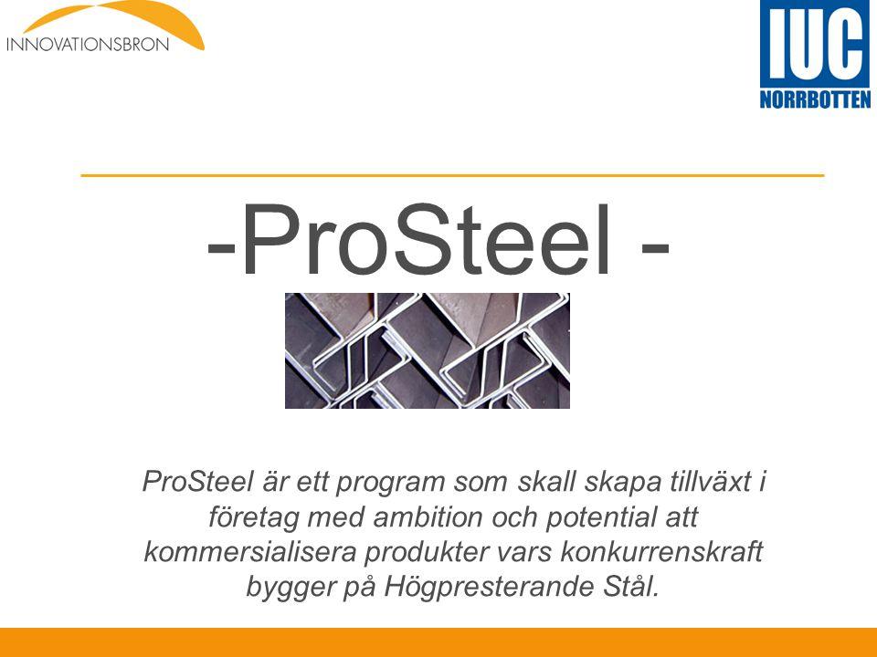 -ProSteel - ProSteel är ett program som skall skapa tillväxt i företag med ambition och potential att kommersialisera produkter vars konkurrenskraft b