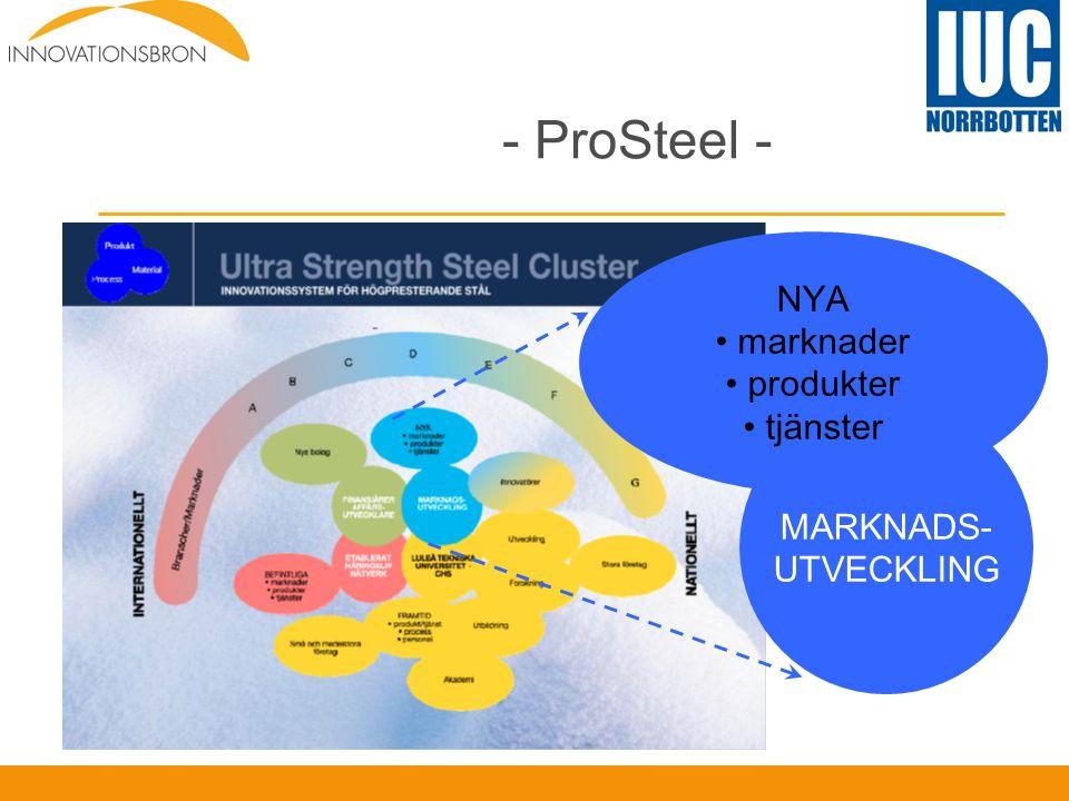 - ProSteel - MARKNADS- UTVECKLING NYA • marknader • produkter • tjänster
