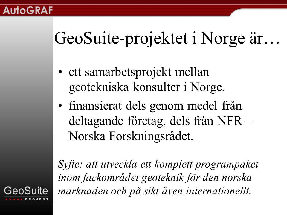 Nordiskt samarbete •Samarbete på 3 delområden –Redovisning –Stabilitet –Sättning •GeoSuite Norge två egna projekt –Spont –Pålgrupp