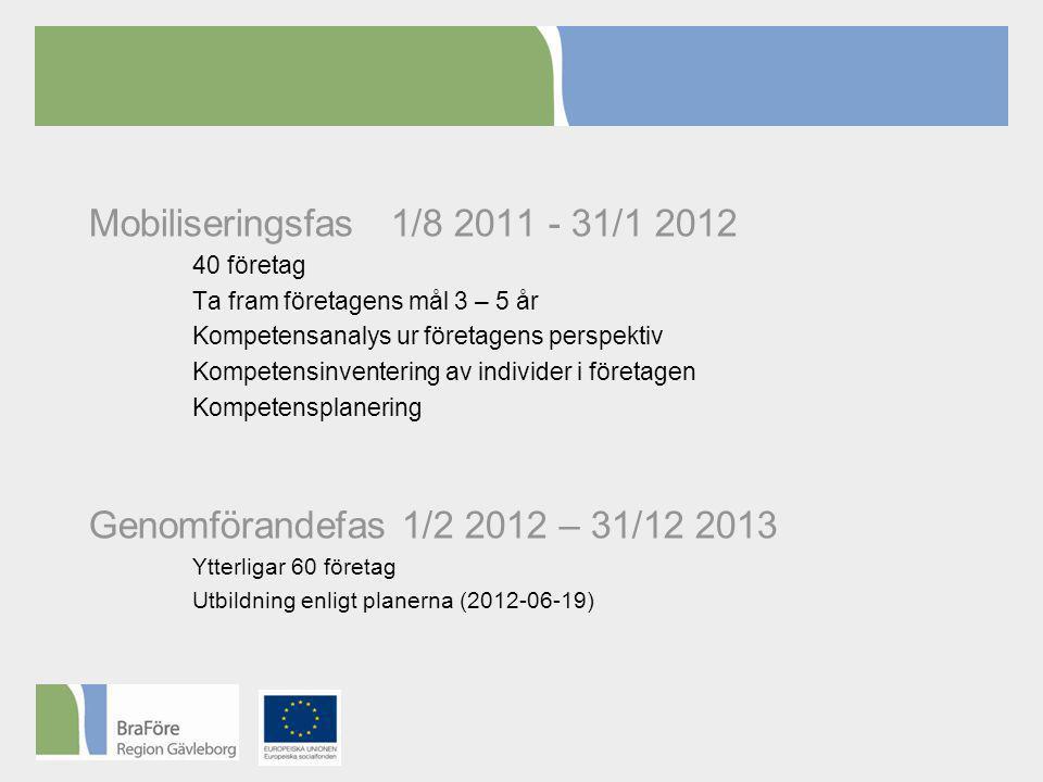 Mobiliseringsfas 1/8 2011 - 31/1 2012 40 företag Ta fram företagens mål 3 – 5 år Kompetensanalys ur företagens perspektiv Kompetensinventering av individer i företagen Kompetensplanering Genomförandefas 1/2 2012 – 31/12 2013 Ytterligar 60 företag Utbildning enligt planerna (2012-06-19)